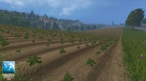 Forgotten Plants Potatoes Textures V 1 0 (4)