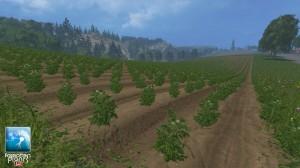 Forgotten Plants Potatoes Textures V 1 0 (5)