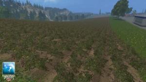 Forgotten Plants Potatoes Textures V 1 0 (6)