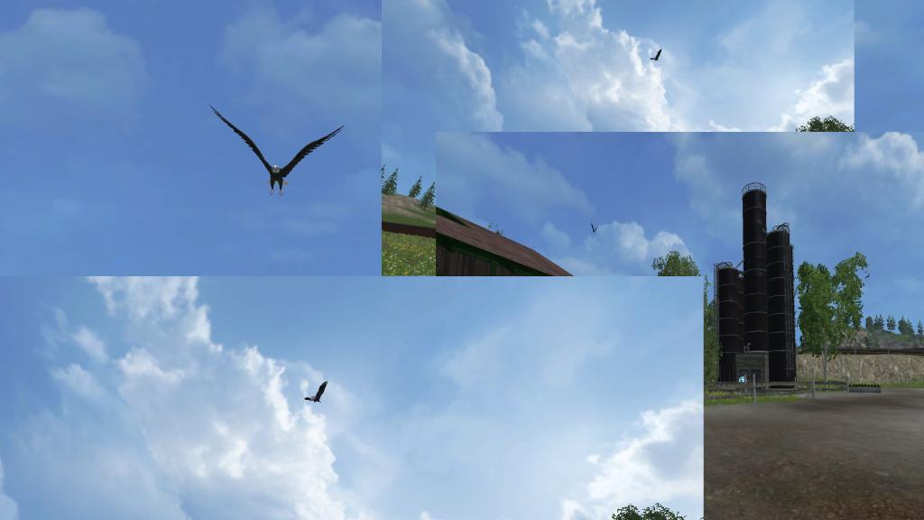 Eagle Flying for FS 2015