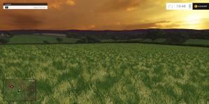 JUST CUT GRASS TEXTURE V1.0 FS 15 (1)