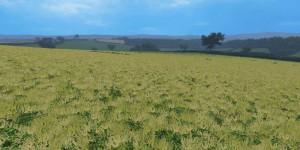 JUST CUT GRASS TEXTURE V1.0 FS 15 (3)
