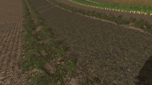 Additional Texture Package V 1.0 FS 15 (3)