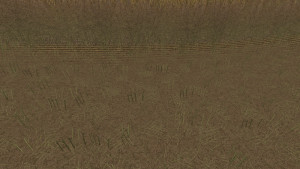 Additional Texture Package V 1.0 FS 15 (6)