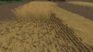 Additional Texture Package V 1.0 FS 15 (7)