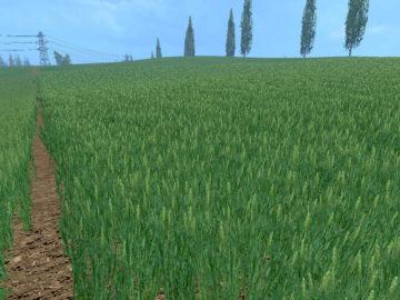 Weizen Textur von Gerste und Raps V 3.0 LS15 (12)