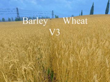 Weizen Textur von Gerste und Raps V 3.0 LS15 (20)