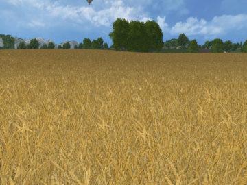 Weizen Textur von Gerste und Raps V 3.0 LS15 (21)