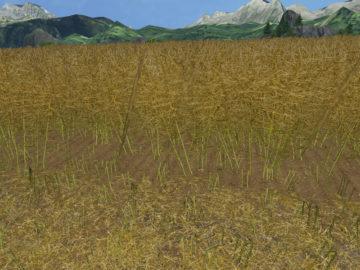 Weizen Textur von Gerste und Raps V 3.0 LS15 (27)