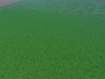 Weizen Textur von Gerste und Raps V 3.0 LS15 (3)