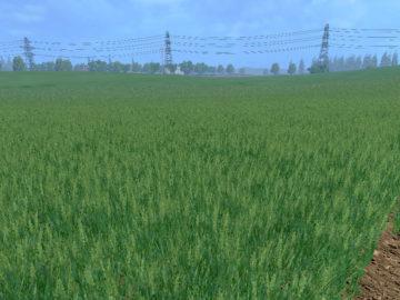 Weizen Textur von Gerste und Raps V 3.0 LS15 (8)