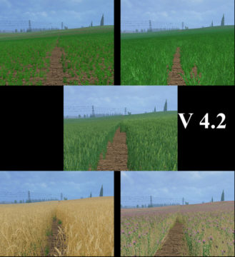 Weizen Textur von Gerste und Raps V 4 Mod (7)