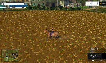 equestrian-woman-drivable-fs15-12