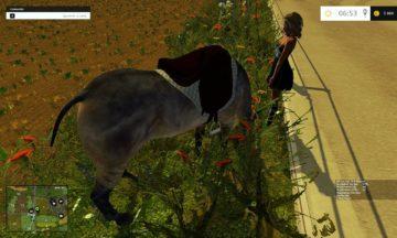 equestrian-woman-v2-ls15-2
