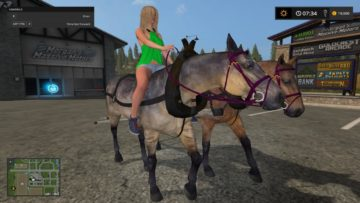 fs17-hard-working-horses-v1-2