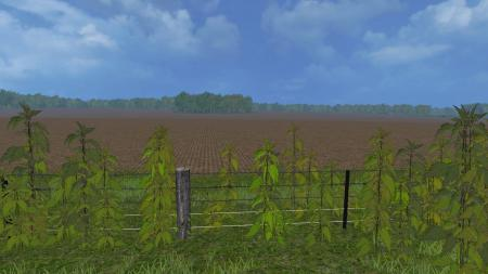 nettles-foliage-texture-ls-2015