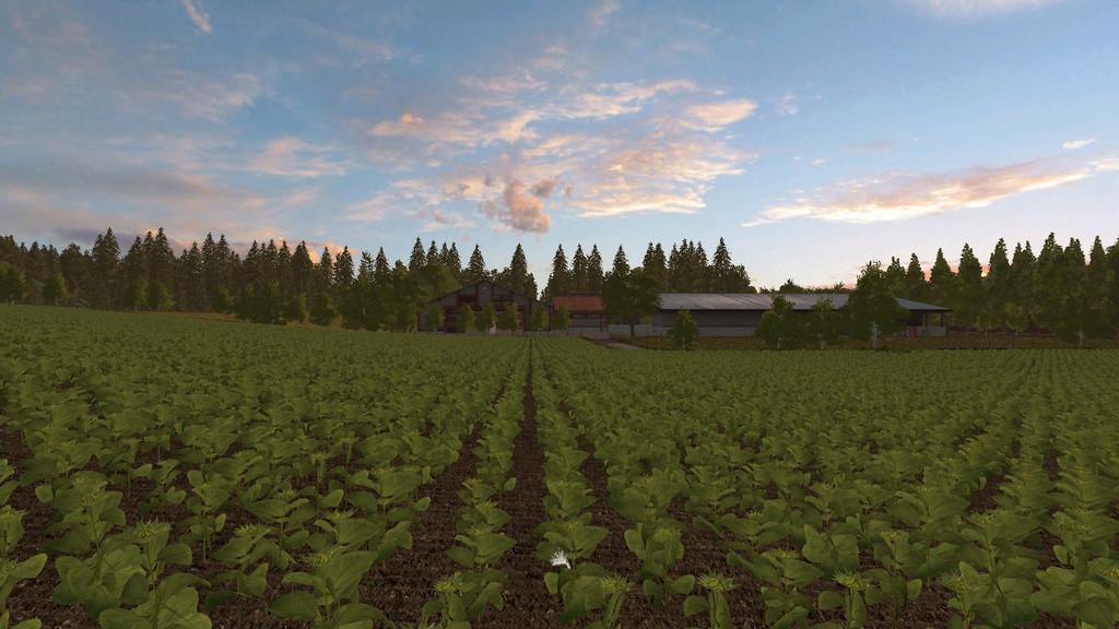 Canadian Map Farming Simulator 2015%0A FS   East Coast Hills